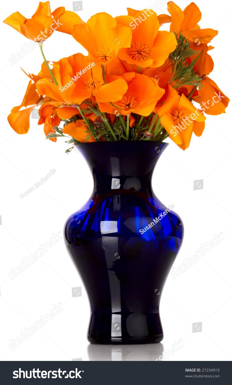 Flower Arrangement Orange California Poppys Blue Stock Photo 27234919 Shutterstock