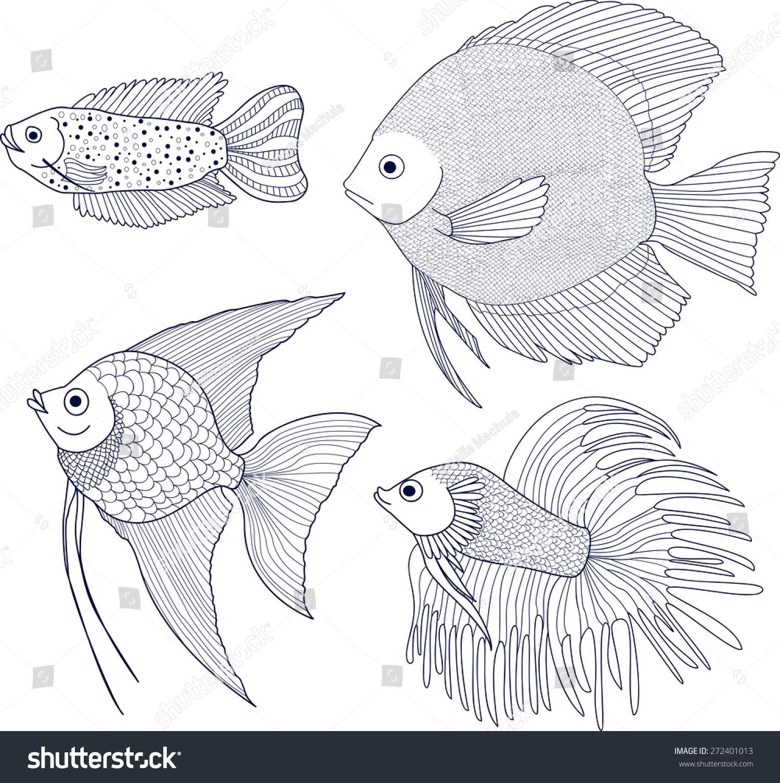 set 4 species fish dwarf gourami stock vector 272401013 shutterstock