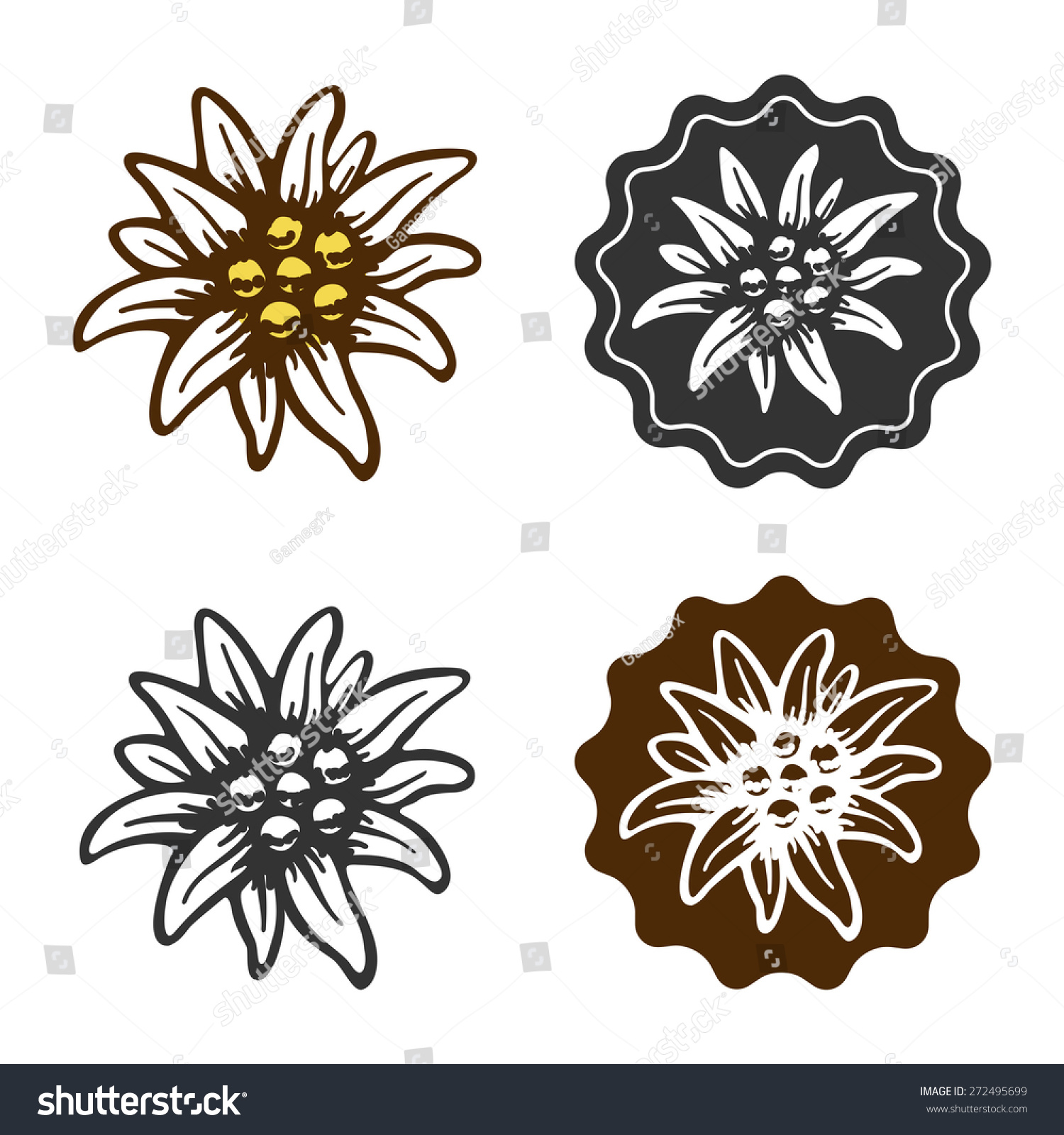 Edelweiss Flower Symbol Alpinism Alps Germany Stock Vector Shutte