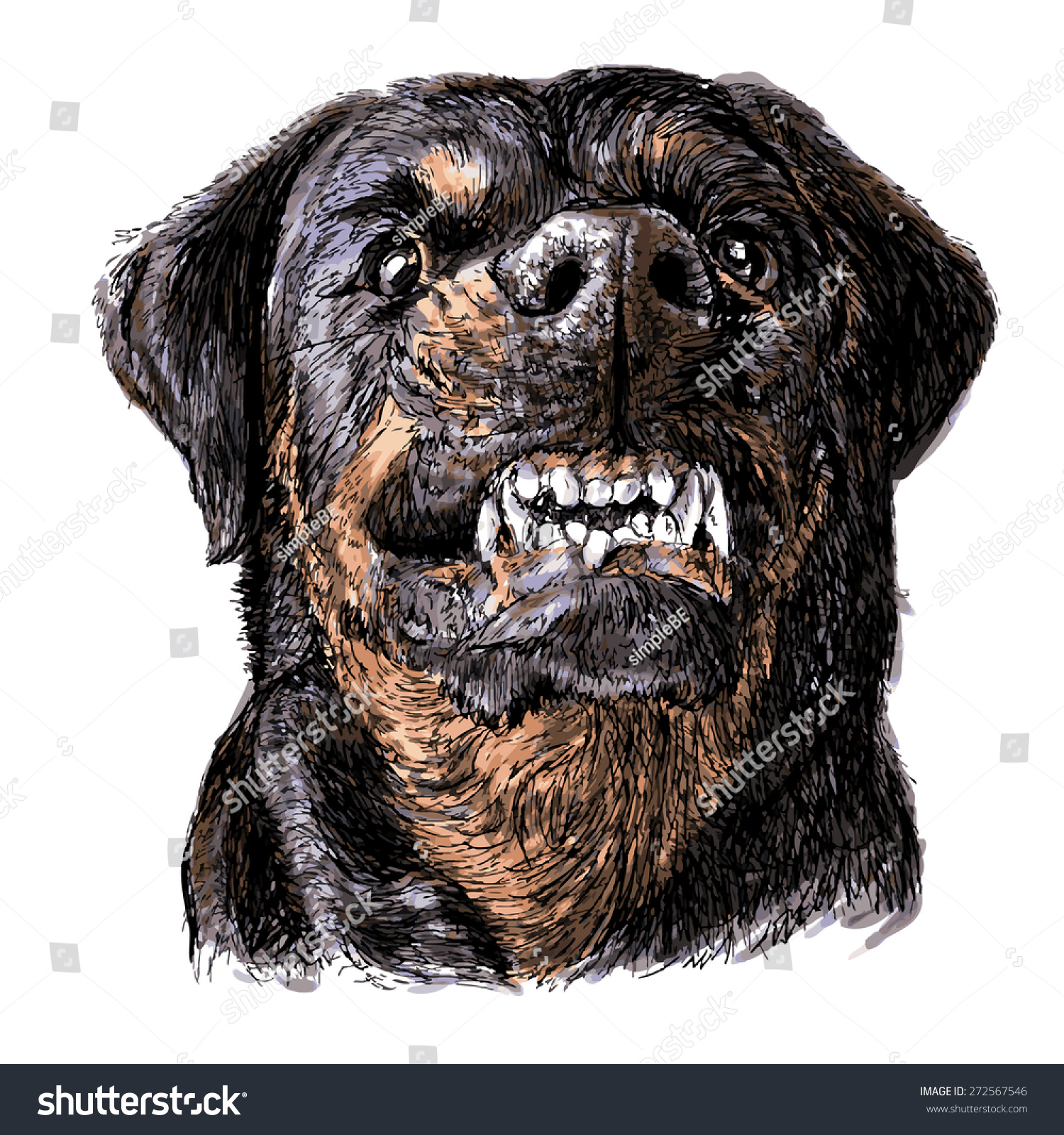 Angry rottweiler dog - photo#24