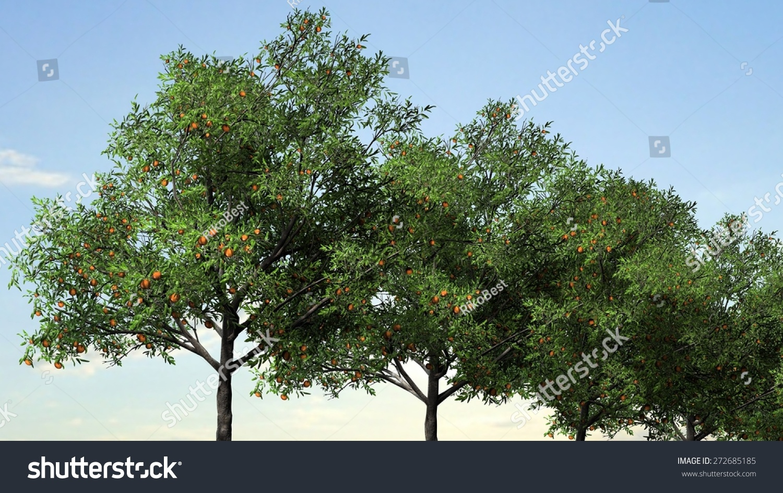 Peach Trees Sunset Sunrise Stock Illustration 272685185 ...