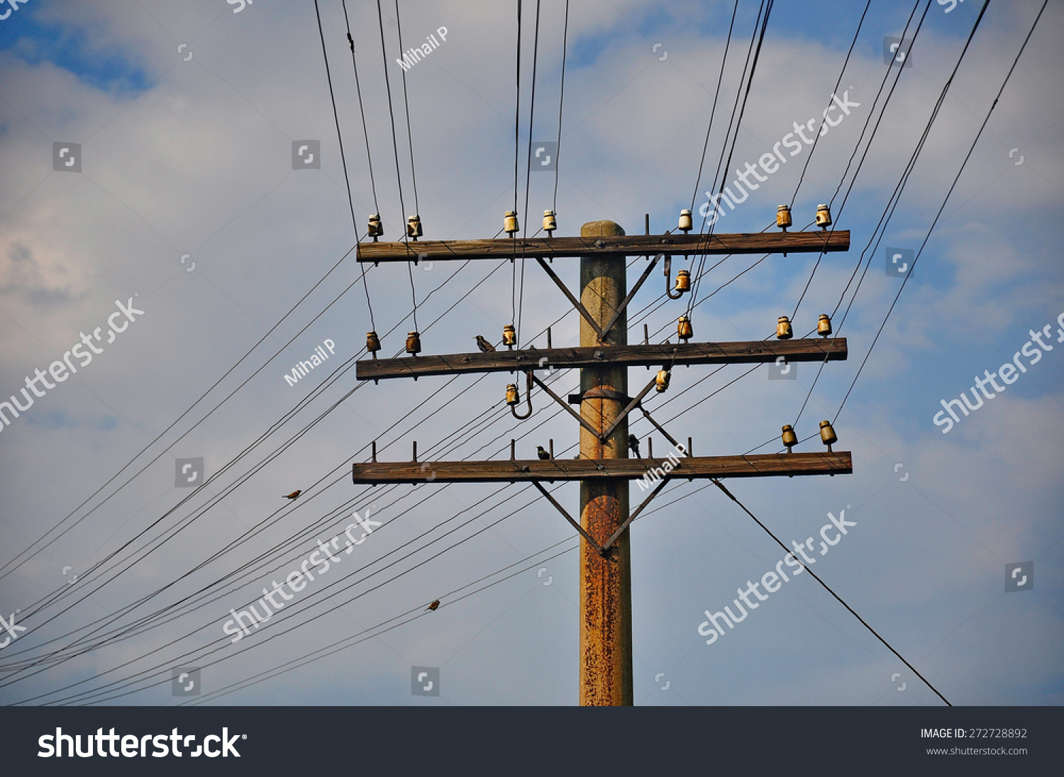 Old Telegraph Pole Wires Couple Birds Stock Photo (Royalty Free ...