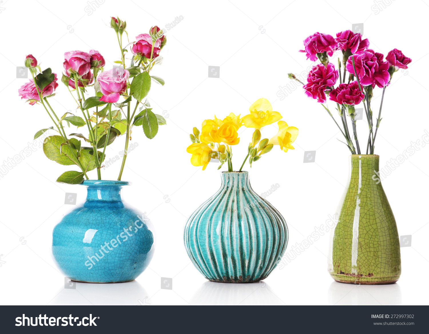 Different beautiful flowers vases isolated on stock photo different beautiful flowers in vases isolated on white reviewsmspy