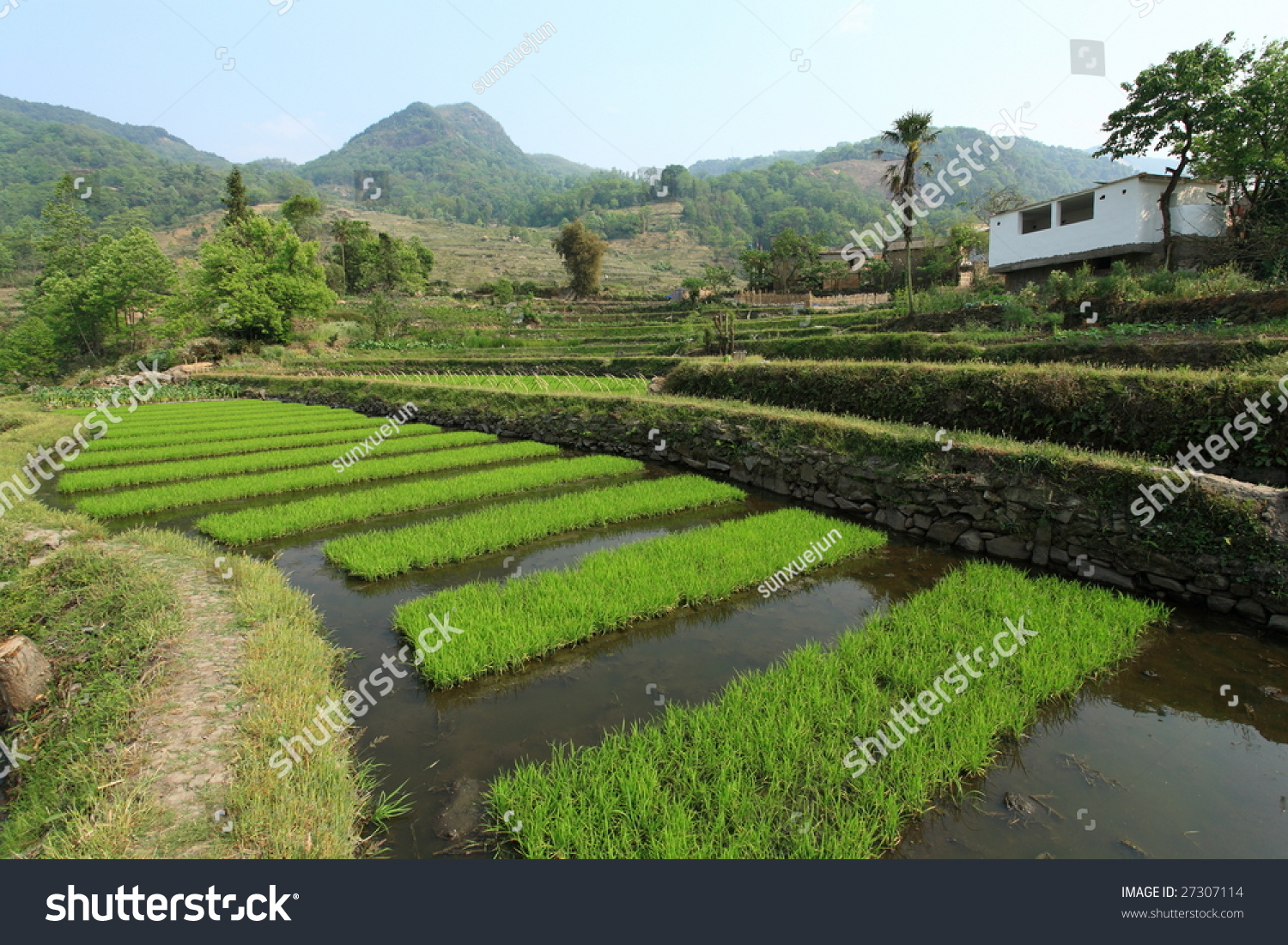 Beautiful Village Landscape In South Of China Stock Photo