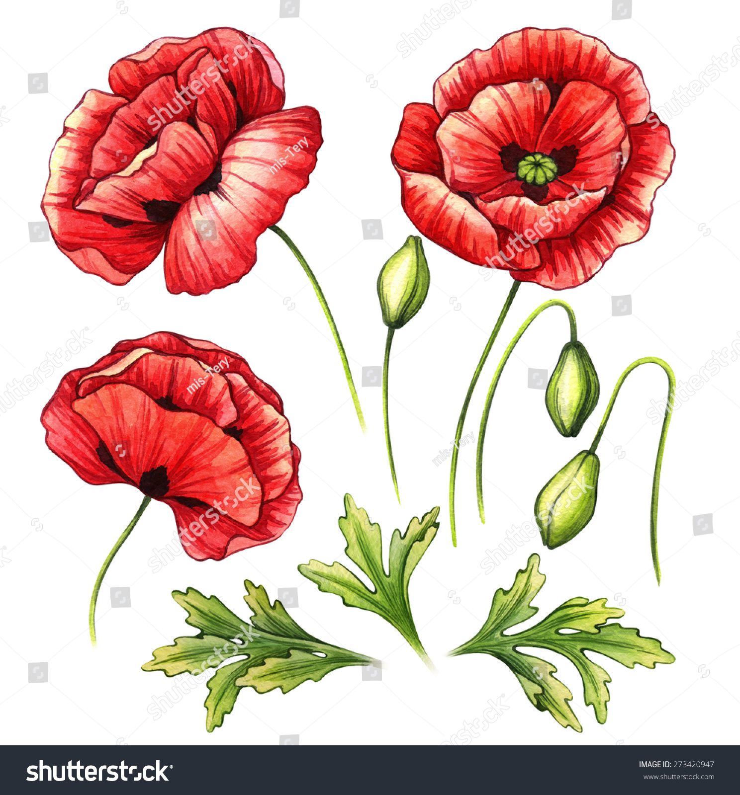 Similar Images Stock Photos Vectors Of Watercolor Set Poppies
