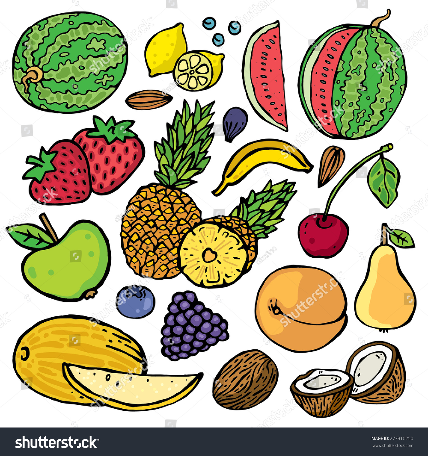freehand color drawing fruits vector illustration set