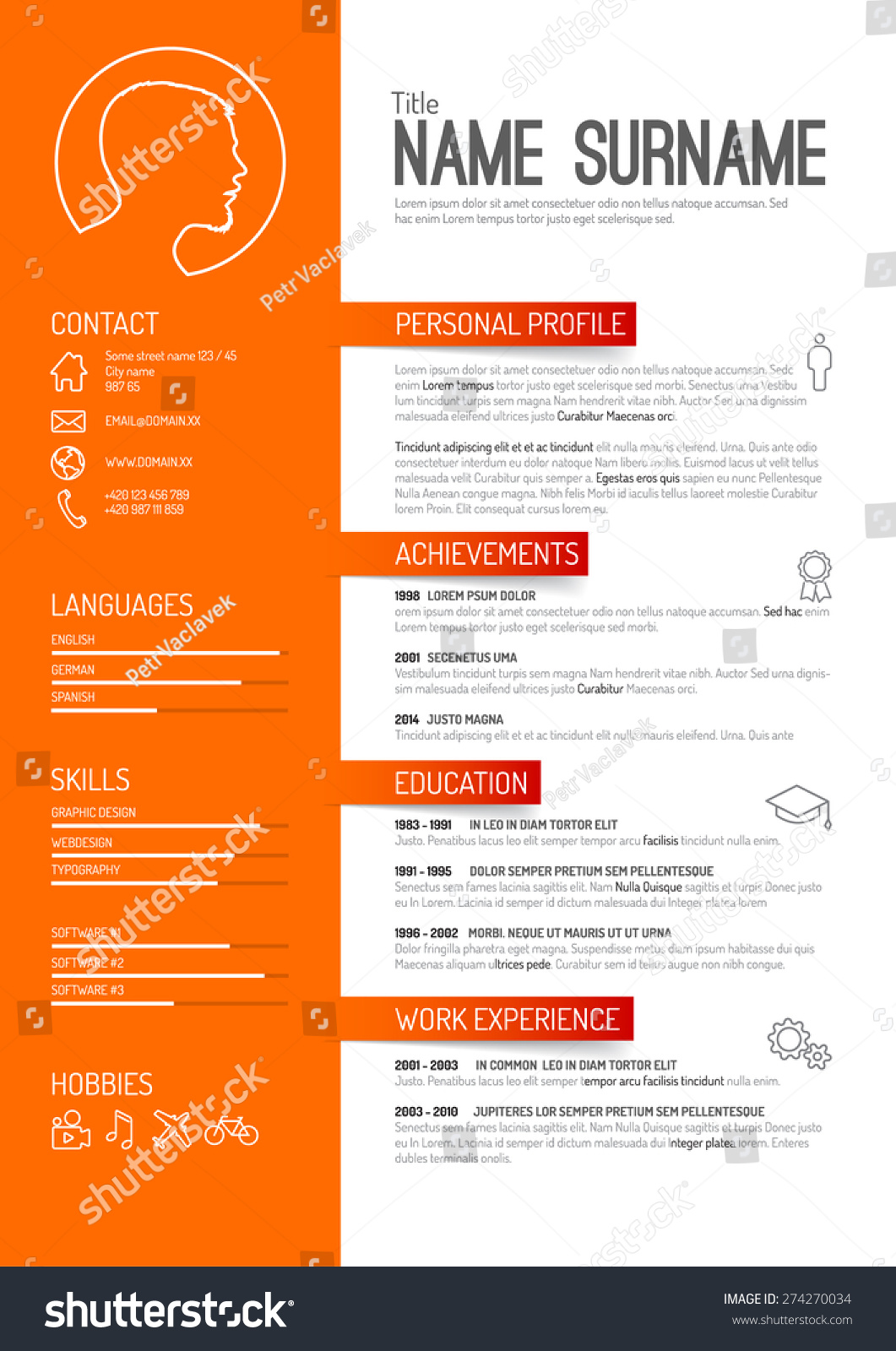 curriculum vitae lay out