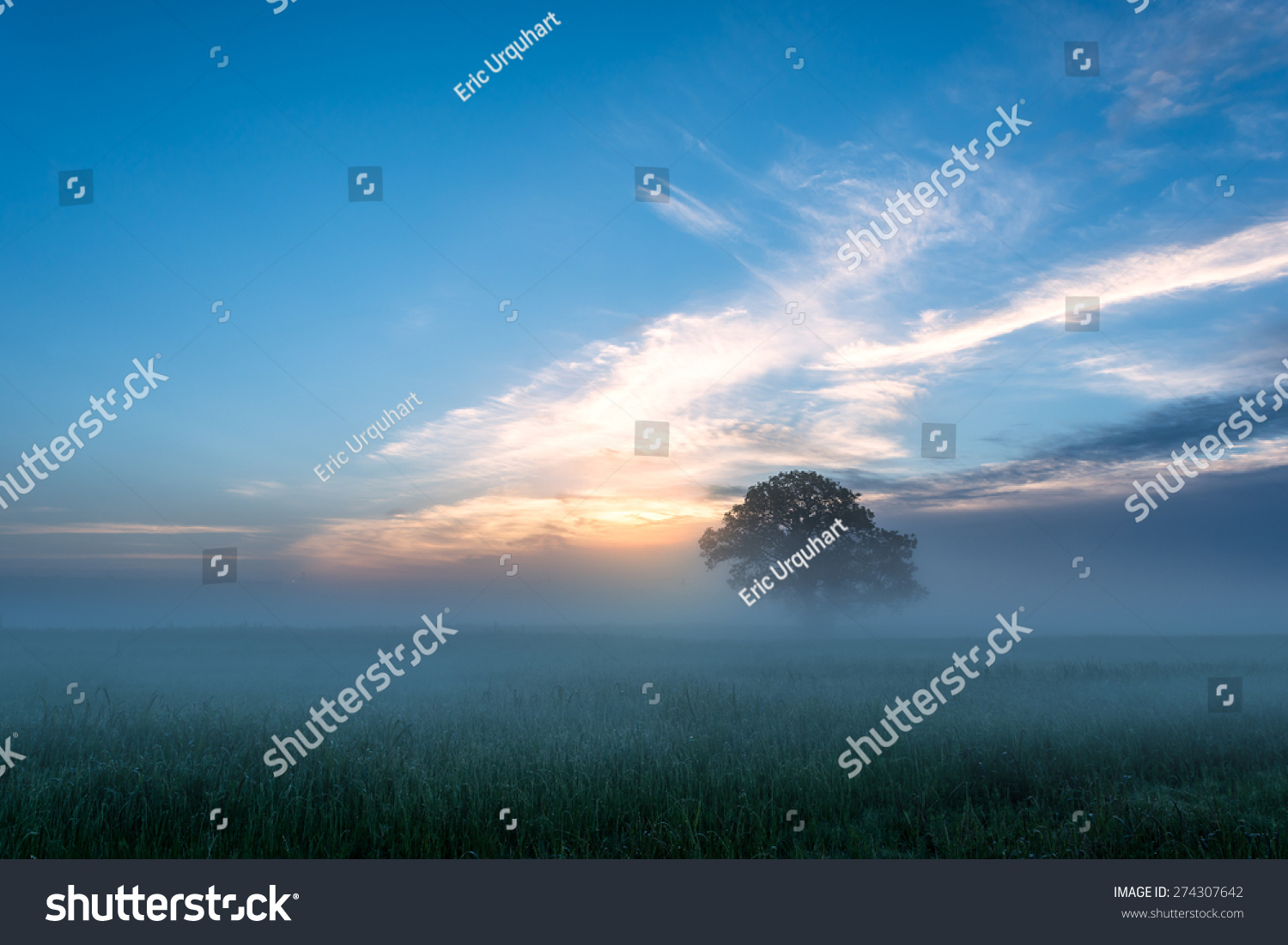Foggy Morning On The Trinity River In Dallas, Texas Stockfoto 274307642   Shutterstock