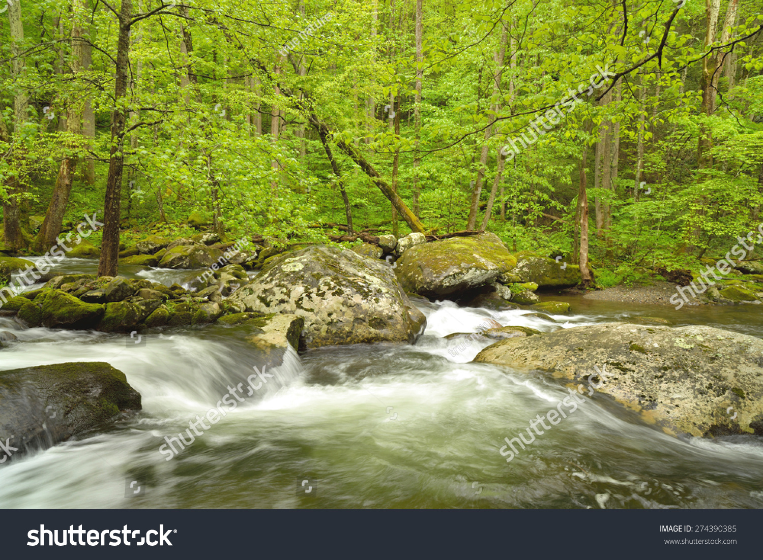 A Fast Flowing Stream Flows Over Boulders In The Smokey ...