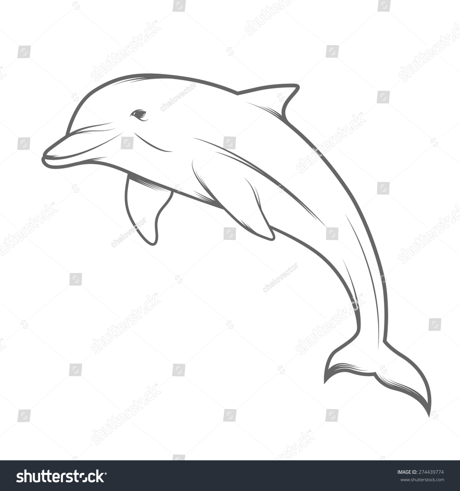 dolphin illustration stock vector 274439774 shutterstock