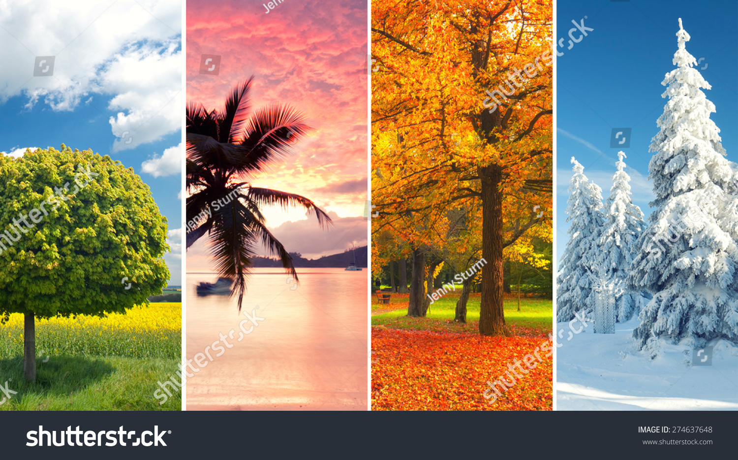 Seasons Collage Stock Images, Royalty-Free Images &- Vectors ...
