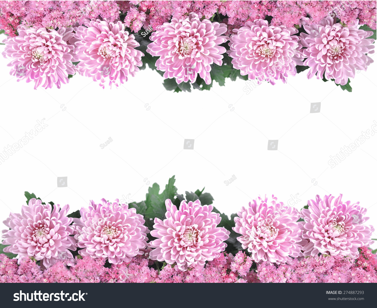 Pretty Frame Border Pink Spring Summer Stock Photo (Royalty Free ...
