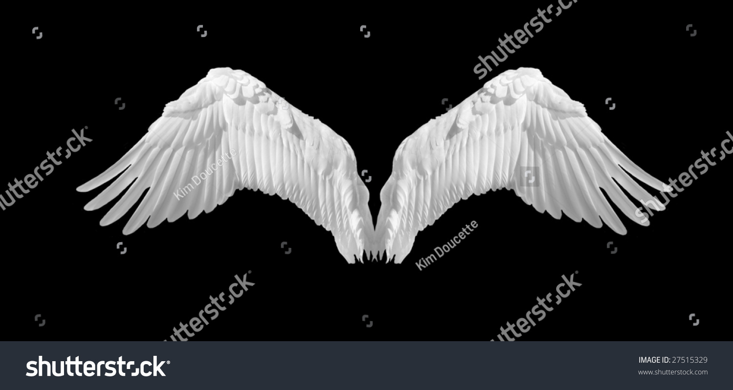 angel wings black background - photo #3