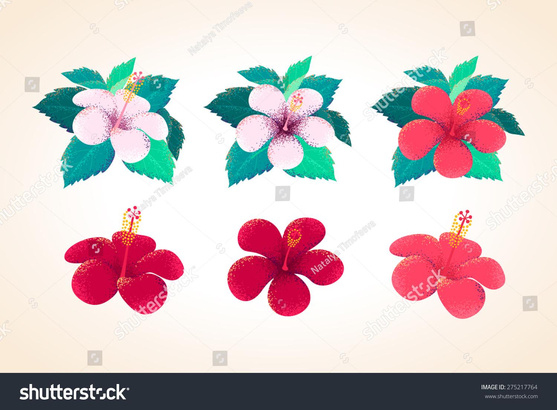 Hibiscus flowers leaves set retro vector stock vector 275217764 hibiscus flowers leaves set retro vector stock vector 275217764 shutterstock izmirmasajfo