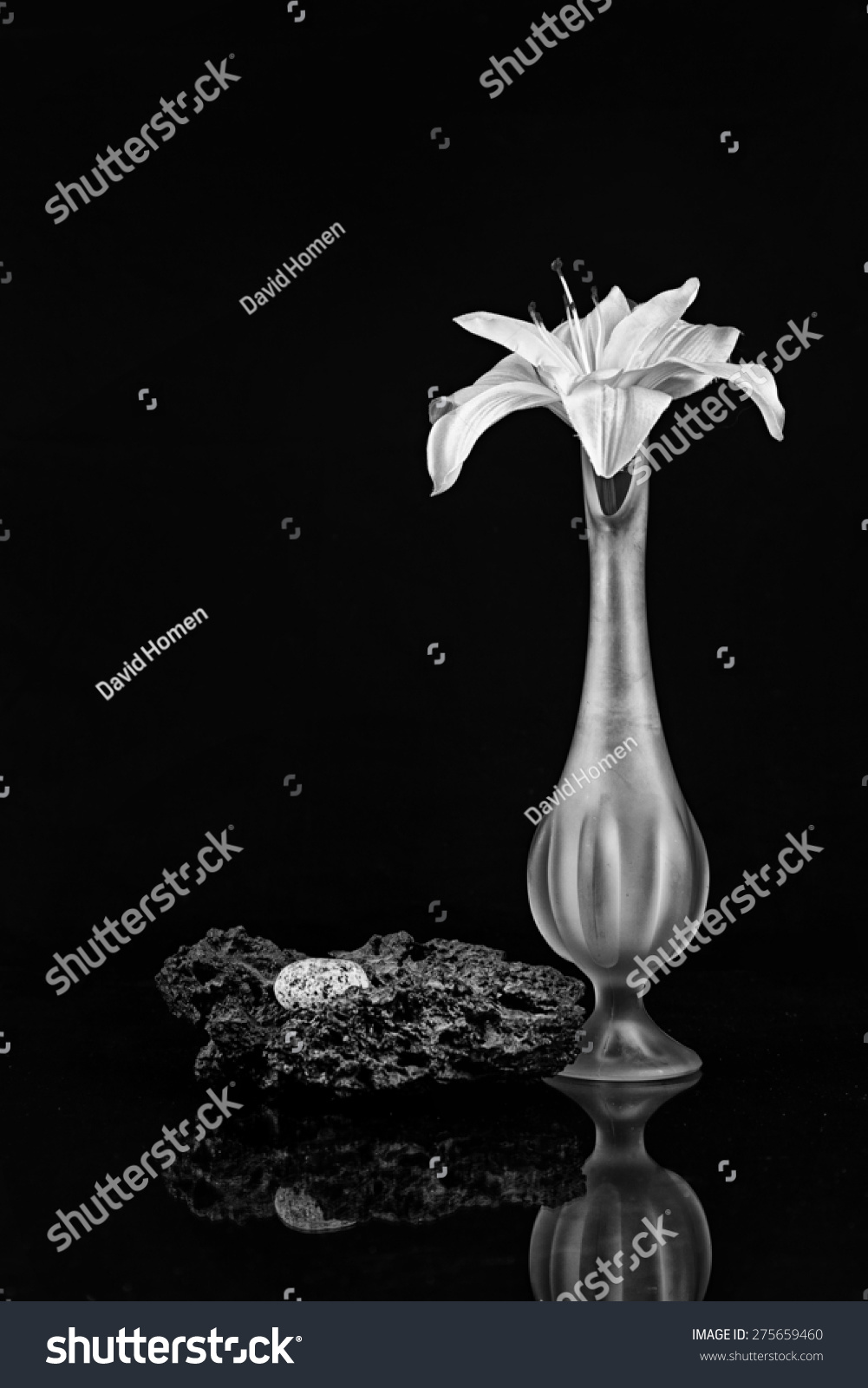 Silk lily tall bud vase granite stock photo 275659460 shutterstock silk lily in a tall bud vase with granite and lava rock in black and white reviewsmspy