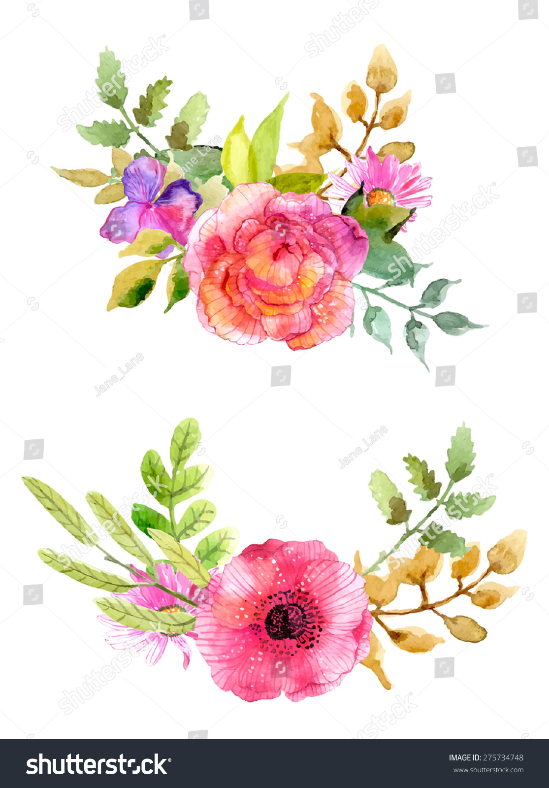 Watercolor flowers set colorful floral collection stock for Spring flowers watercolor