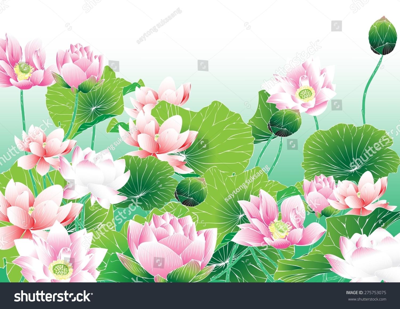 Lotus Paintingsvector Hand Drawn Lotus Flowers Stock Vector ...