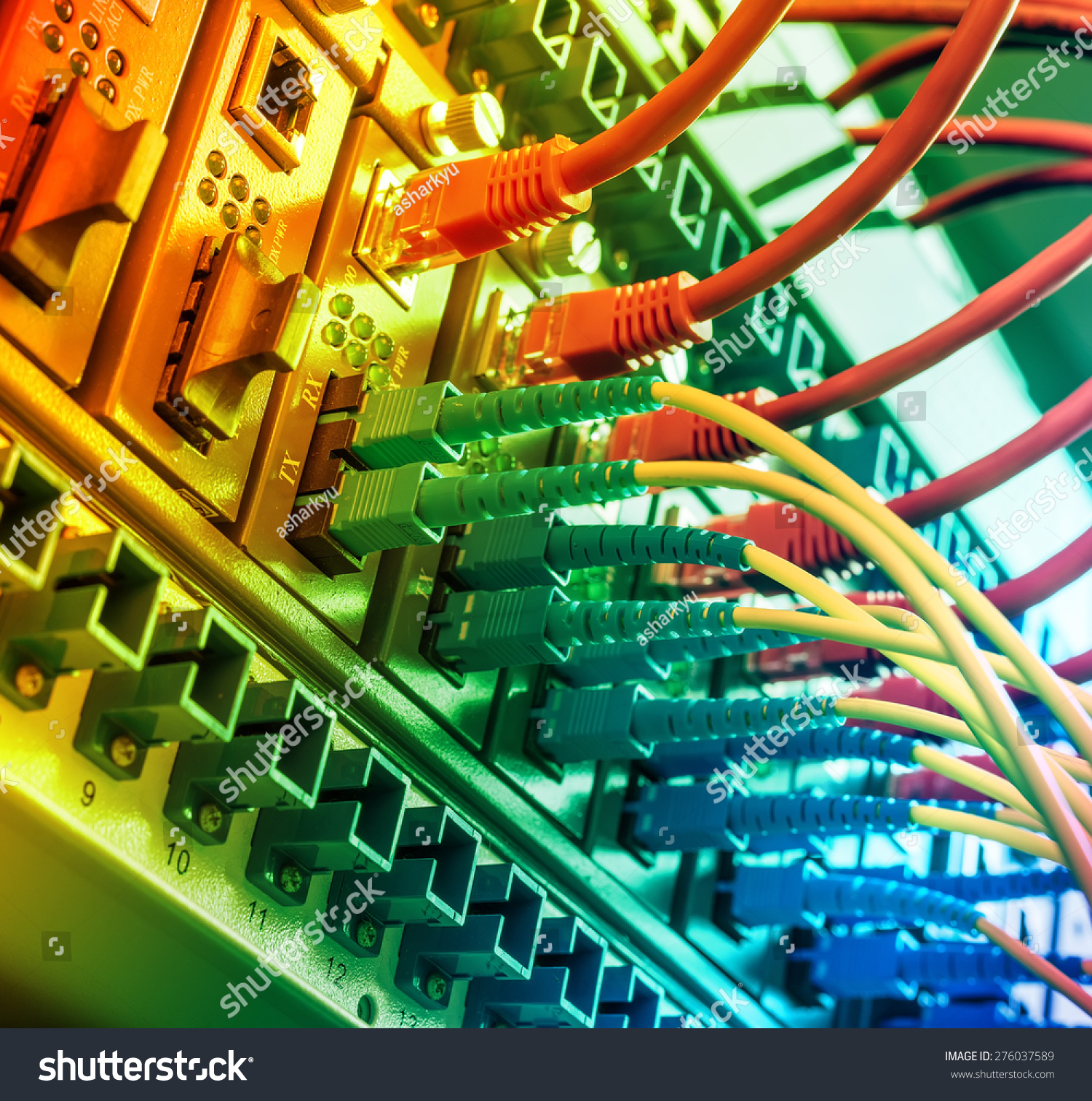 Fiber Optic Cables Connected Ports Stock Photo Edit Now Optics Integrated Circuits Images Of To An And Utp Network Ethernet