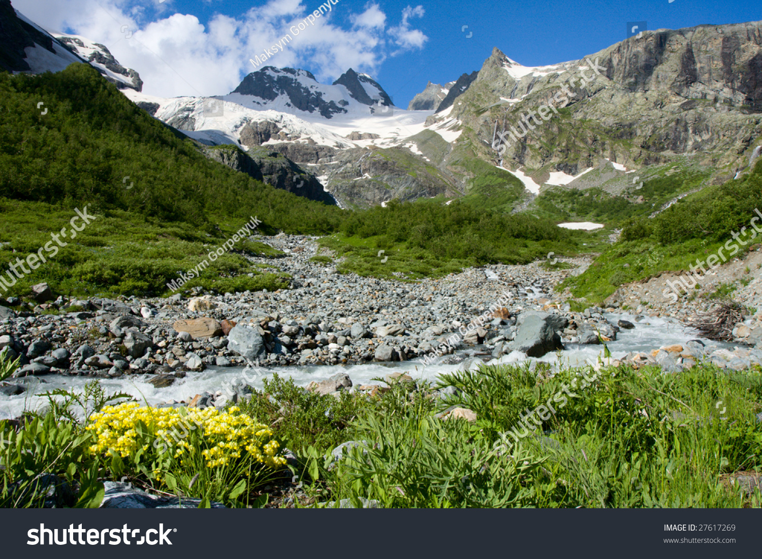 Flowers Near Of Mountain River At Caucasus Stock Photo