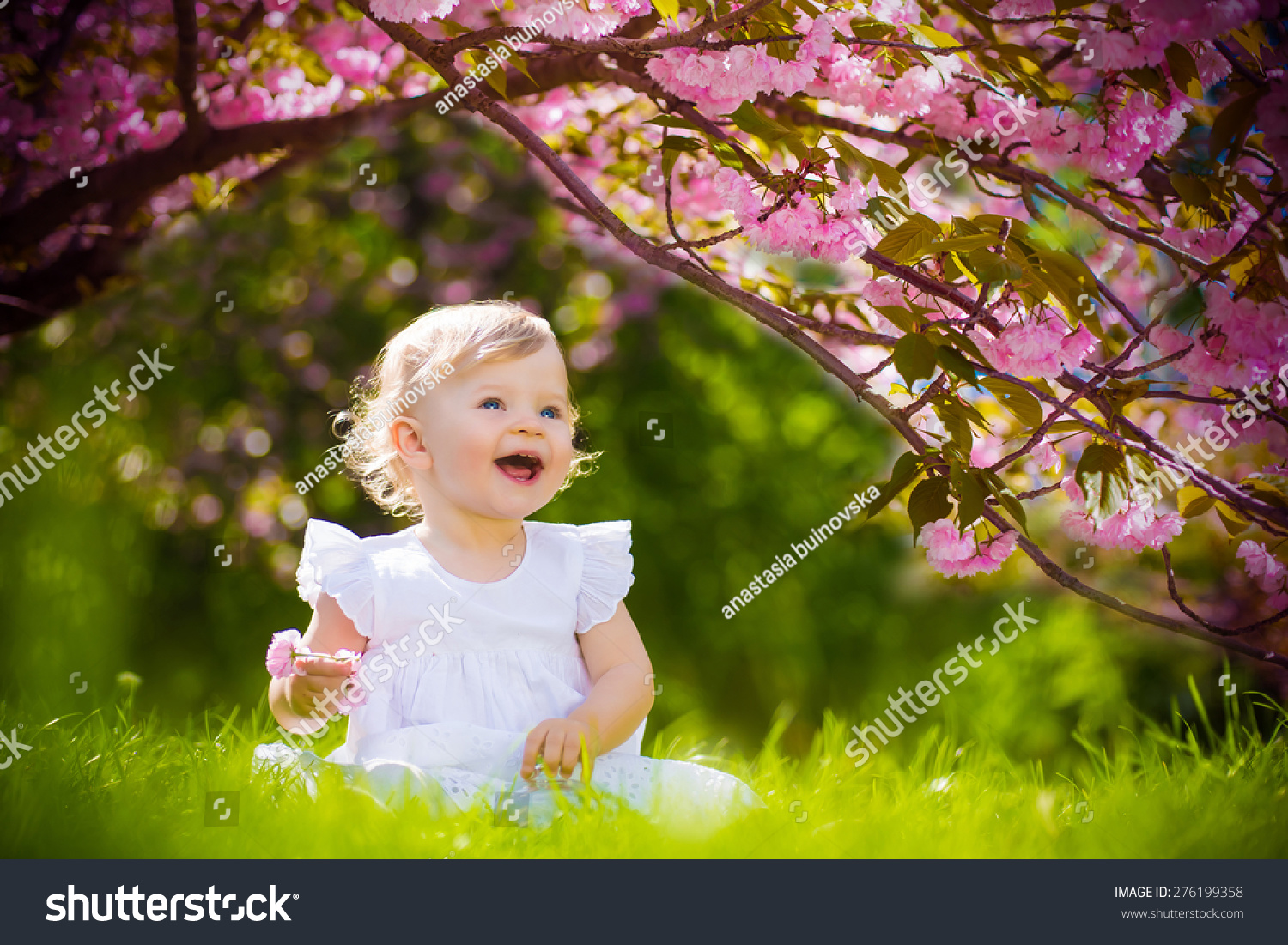 cute adorable nice baby girl white stock photo & image (royalty-free