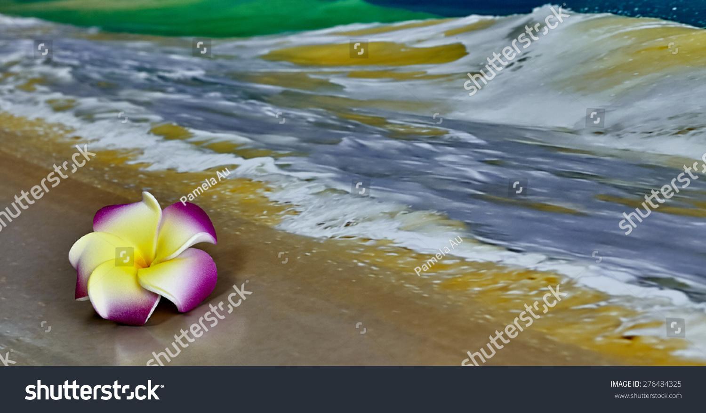 Pink Yellow Hawaiian Flower Plumeria Laying Stock Photo Edit Now