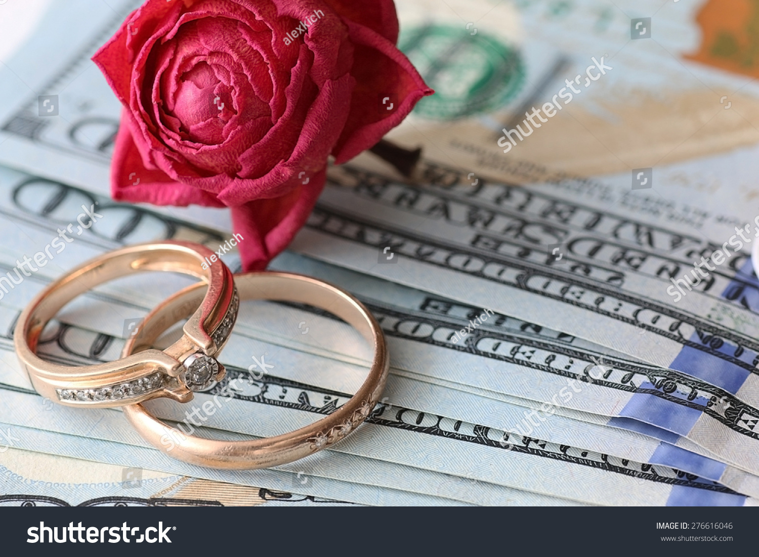 Us Dollar Rose Gift Wedding Gift Money Stock Photo 276616046 ...