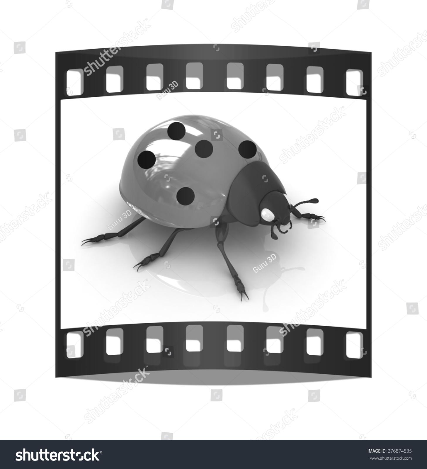 Ladybird On White Background Film Strip Stock Illustration 276874535 ...