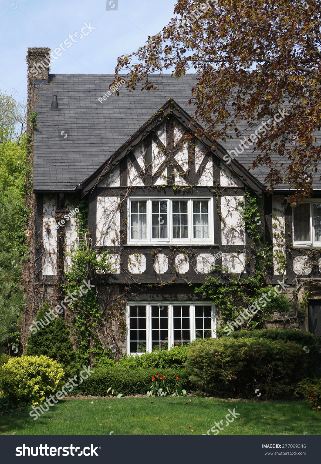 Shady tudor style house with vines