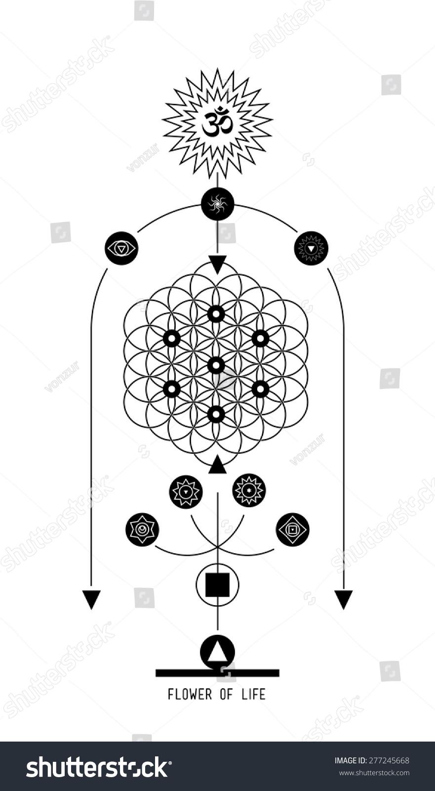 Flower life buddhist hindu tantric symbol stock vector 277245668 flower of life buddhist hindu tantric symbol harmony and balance cosmos and the universe buycottarizona Gallery