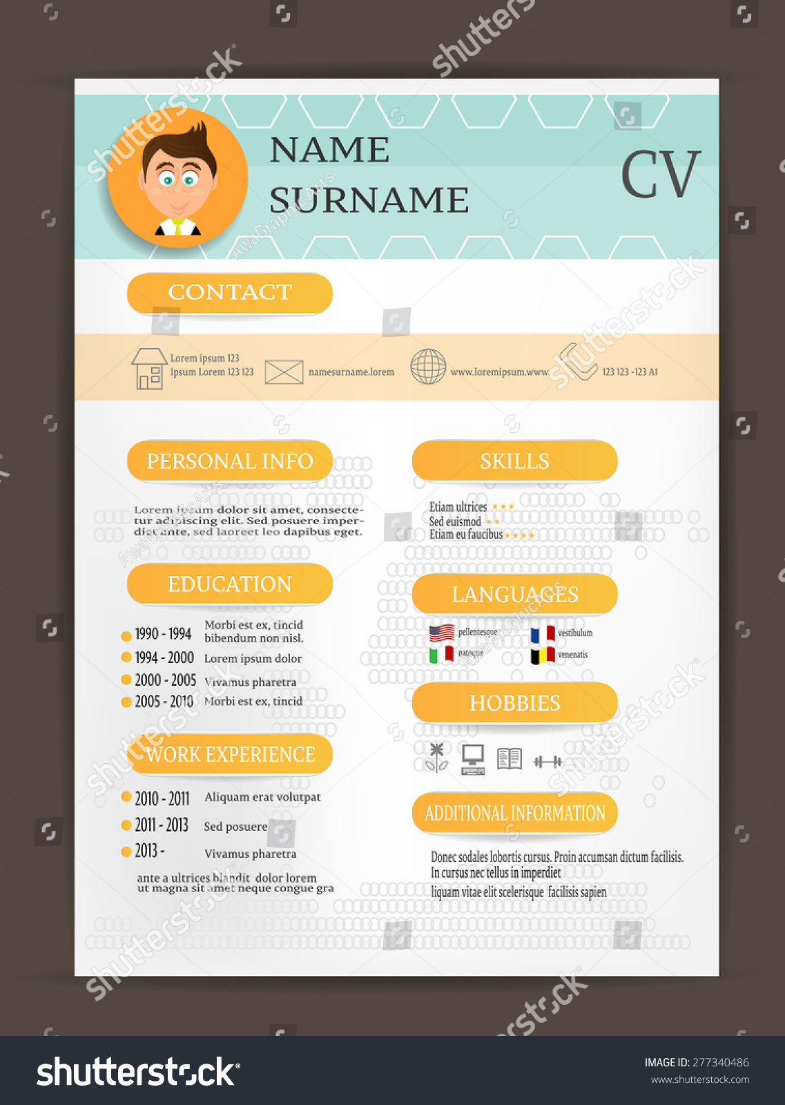 modern curriculum vitae cv resume biography stock vector
