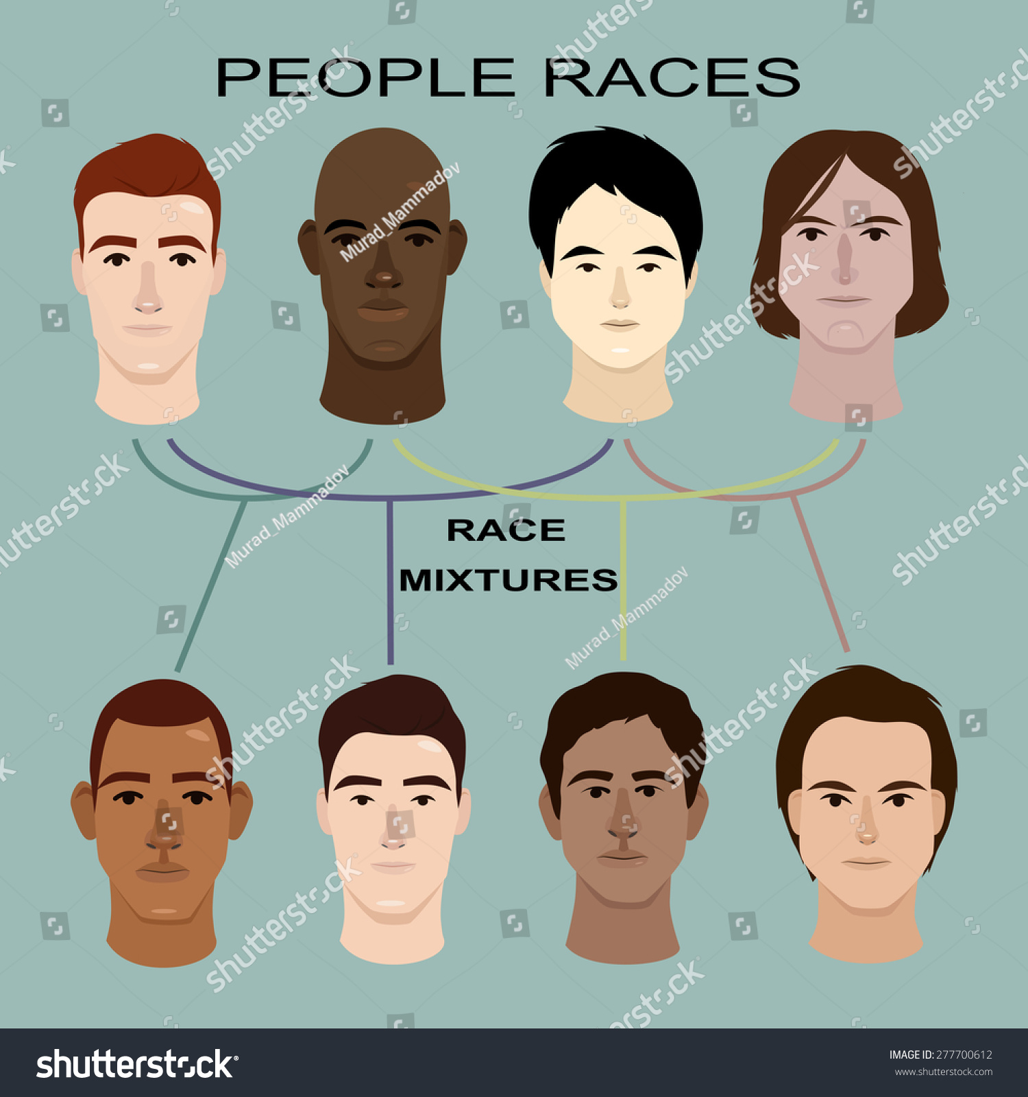 The three human races