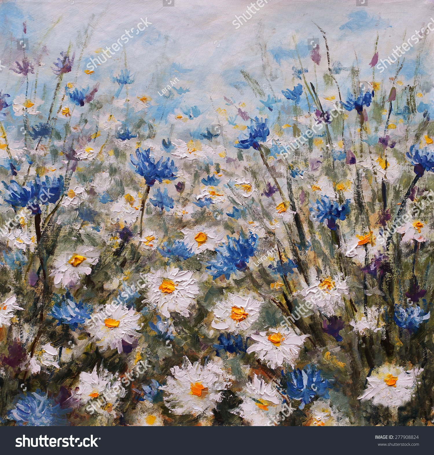 Field White Flowers Glade Cornflowers Daisies Stock Illustration