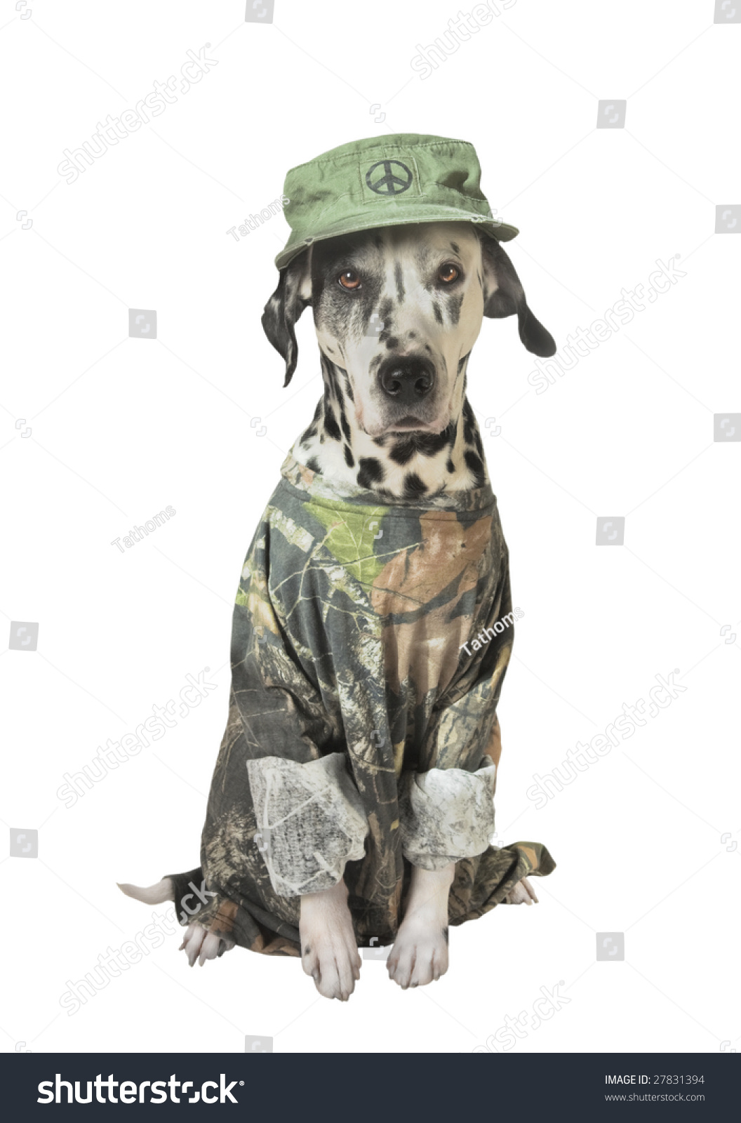 stock-photo-green-peace-or-animals-right