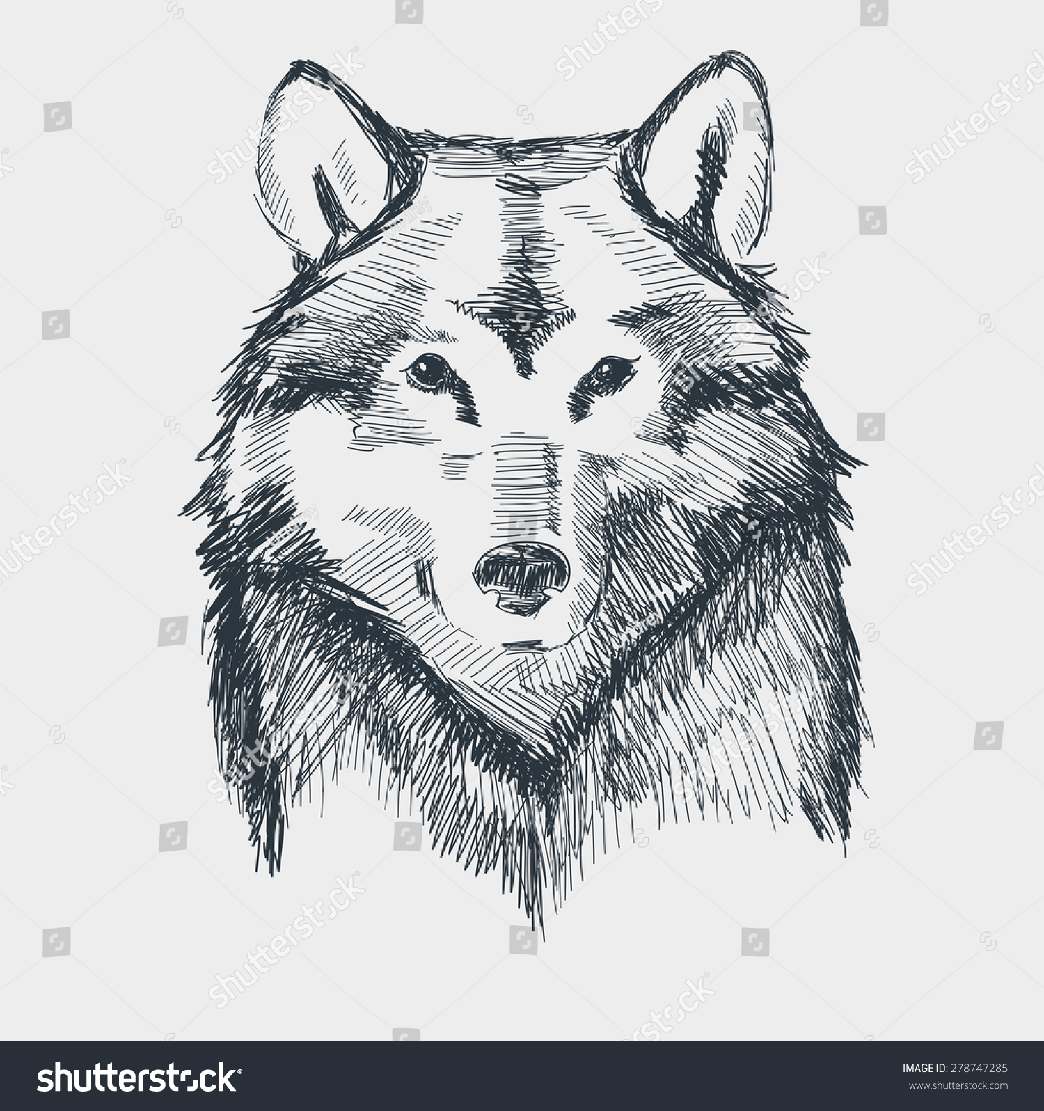 Wolf Head Grunge Hand Drawn Sketch Vector Illustration Draw