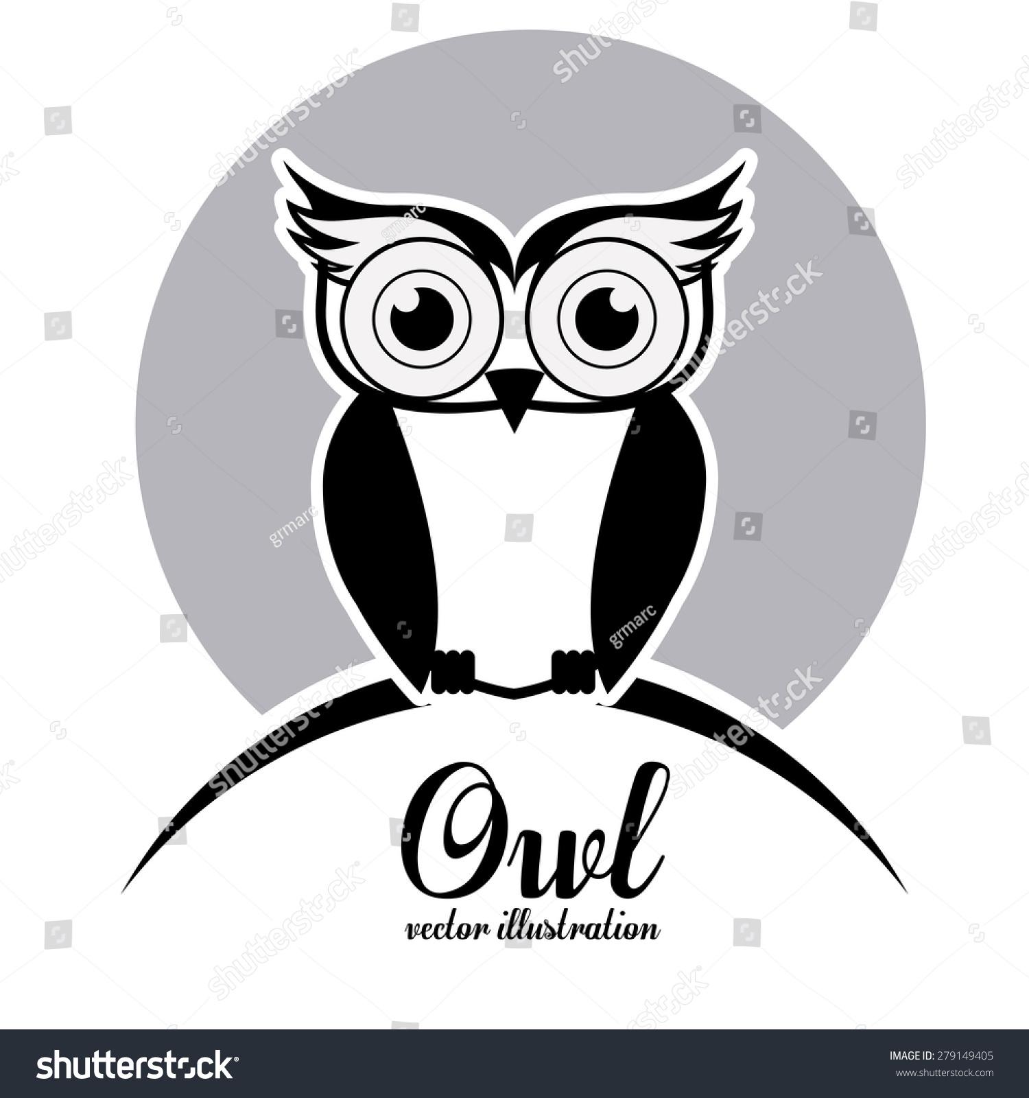 owl design over white background vector stock vector