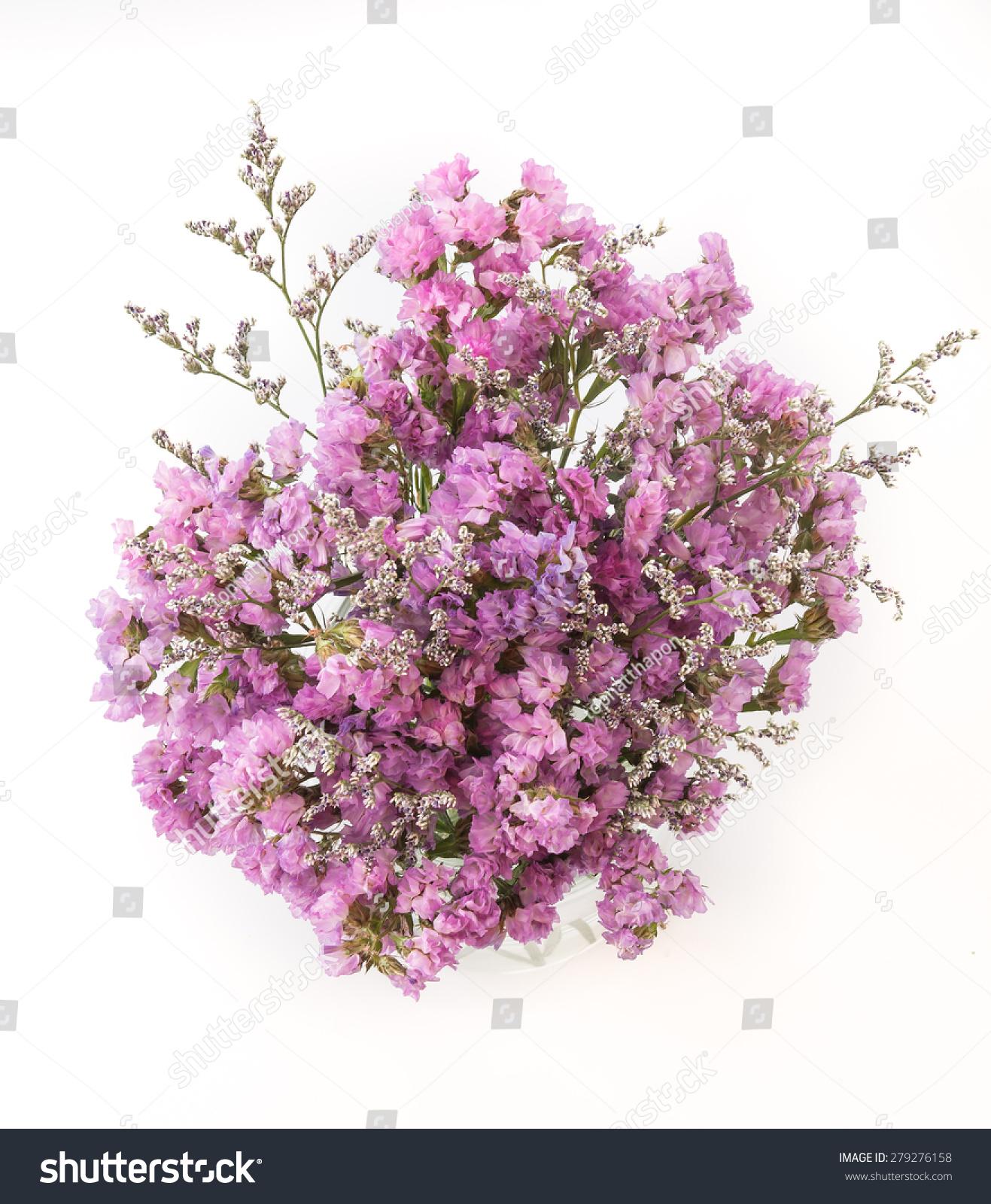 Statice flower bouquet on white background ez canvas id 279276158 mightylinksfo