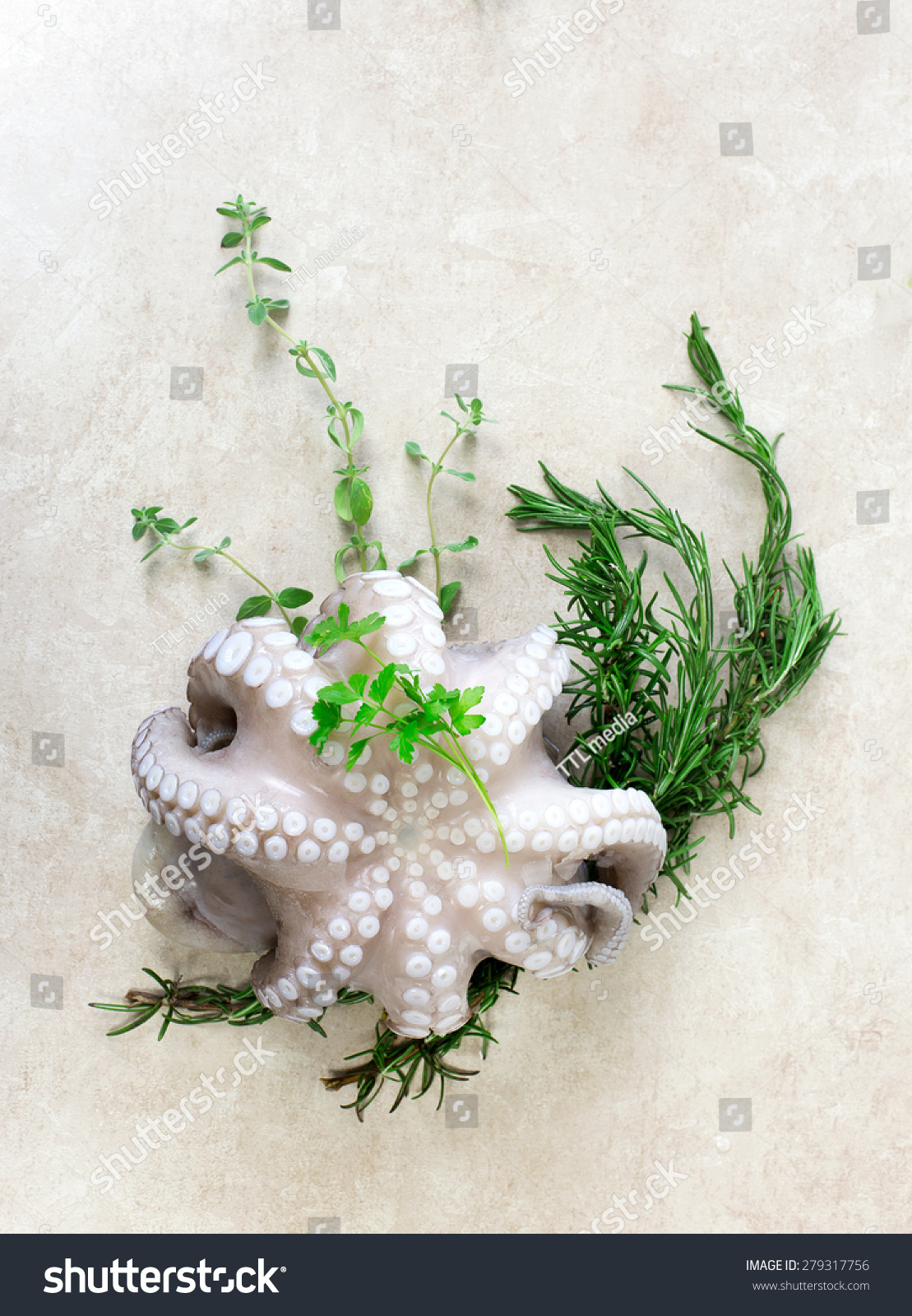 Fresh octopus aromatic herbs stock photo 279317756 for Aromatic herb for fish