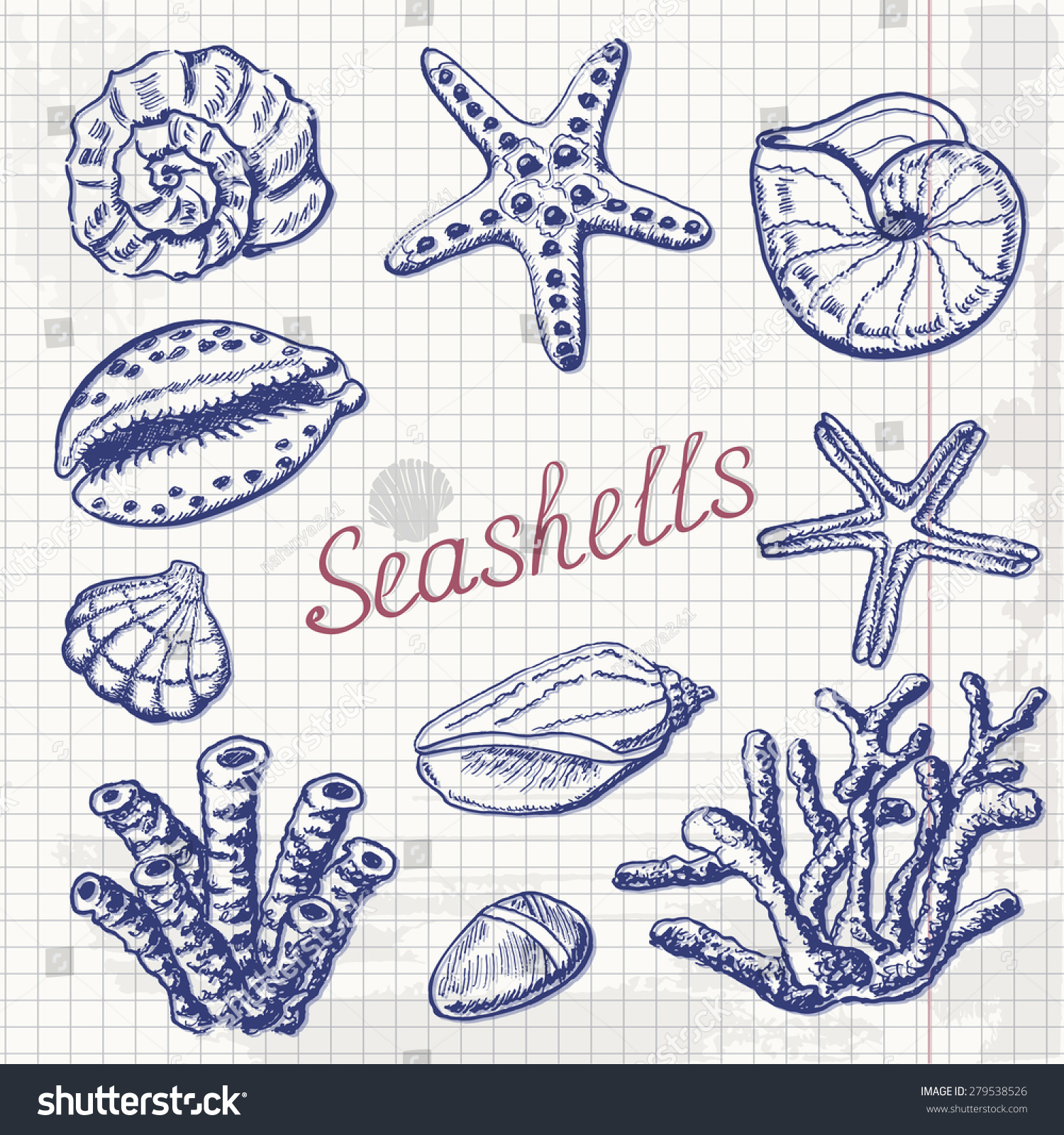 Recreational Sea Shell Collecting