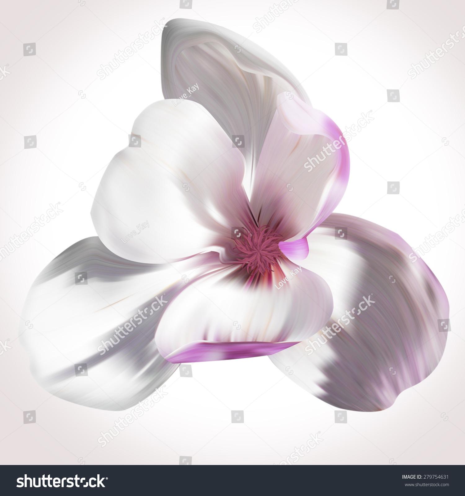 Magnolia illustration close up on white backdrop for design of id 279754631 izmirmasajfo