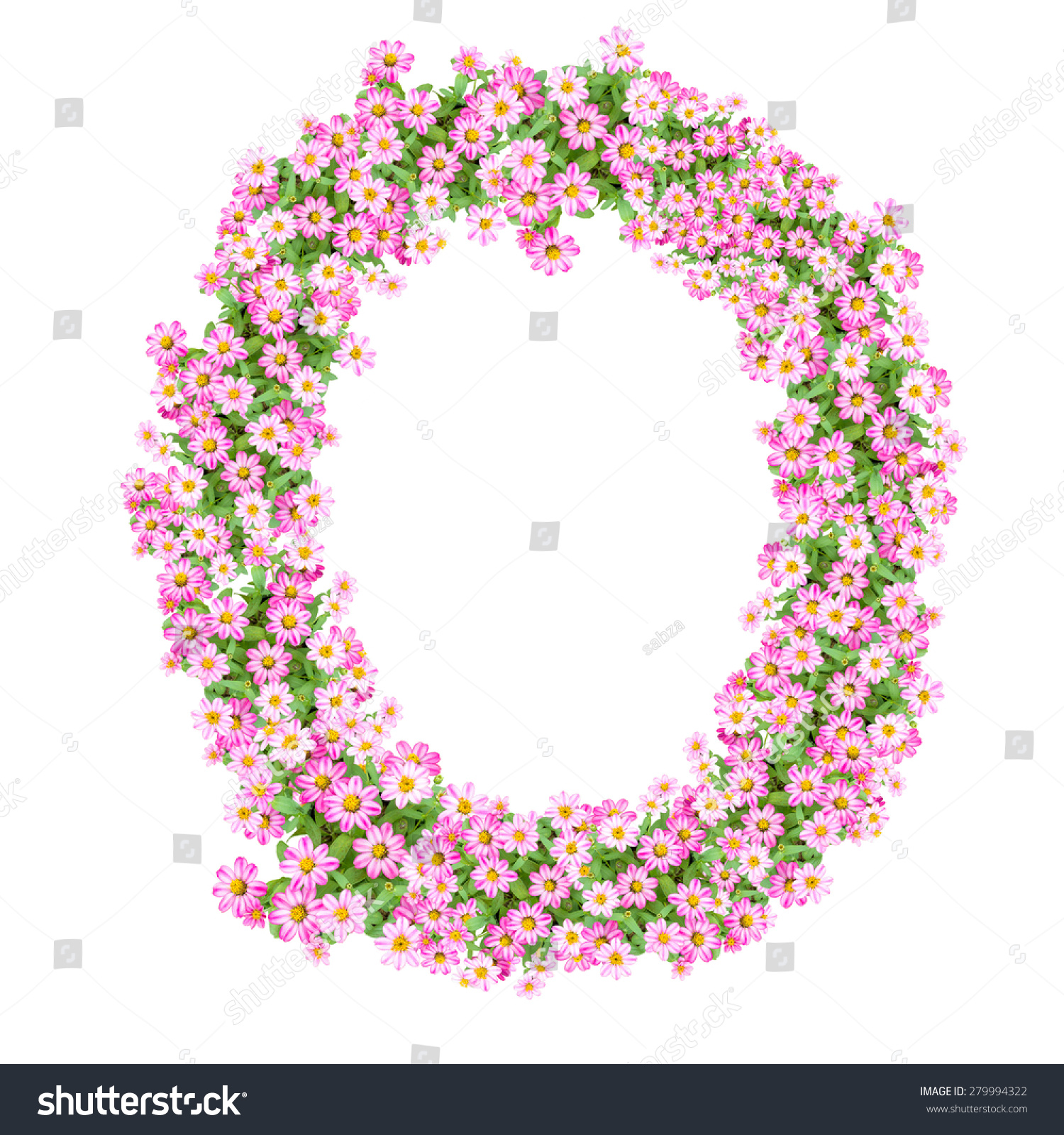 Royalty-free Letter O alphabet with zinnia flower ...