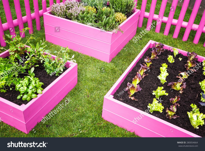 Urban Herb Garden Pink Raised Beds Stock Photo Edit Now 280054664