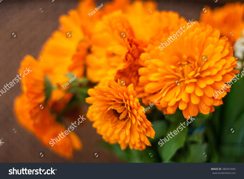 Bunch Of Orange Flowers Ez Canvas