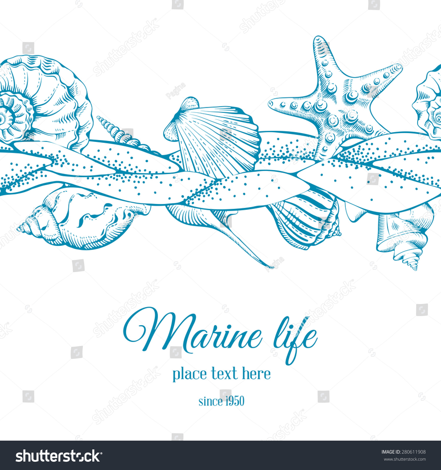 summer sea background sand seashells and sea star vector save to a lightbox