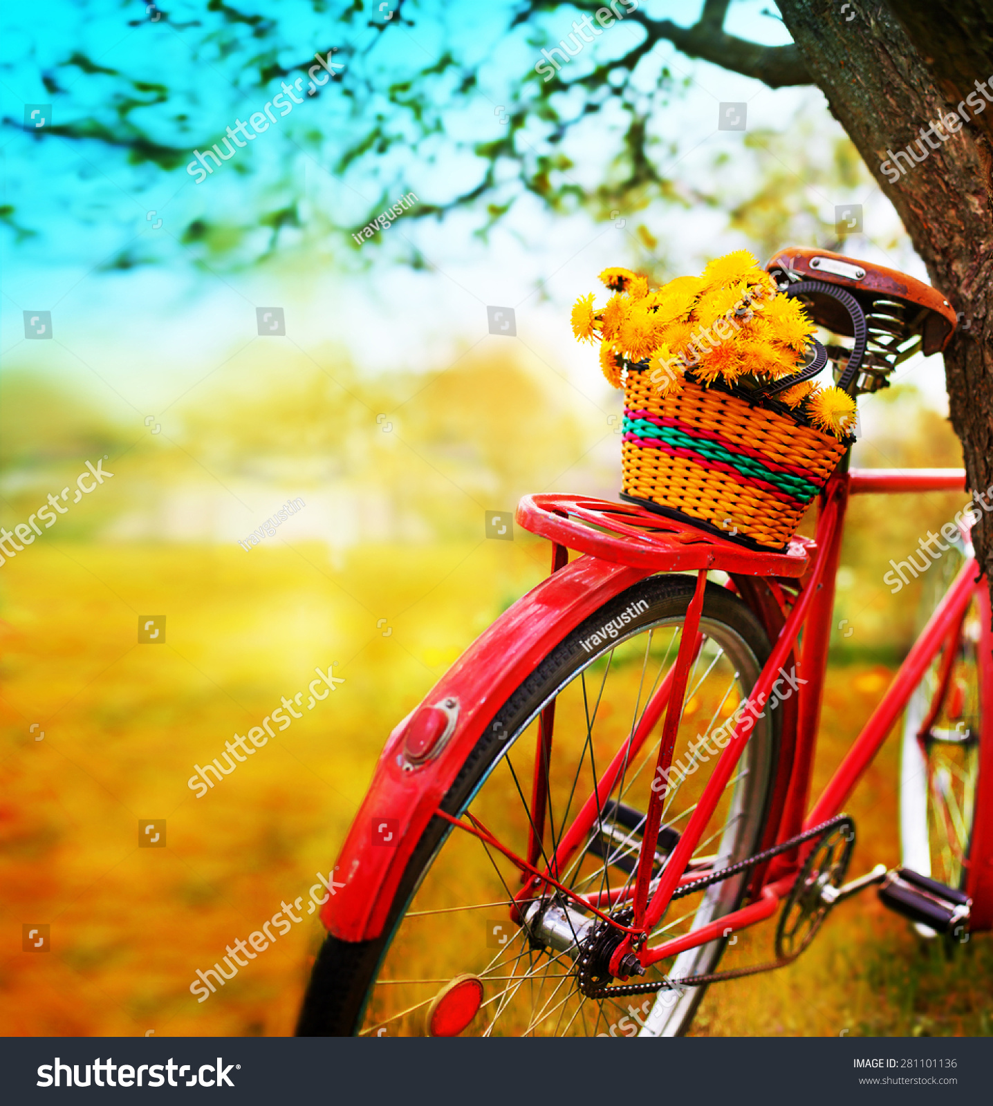 Vintage Bicycle Flowers On Summer Landscape Stock Photo ...