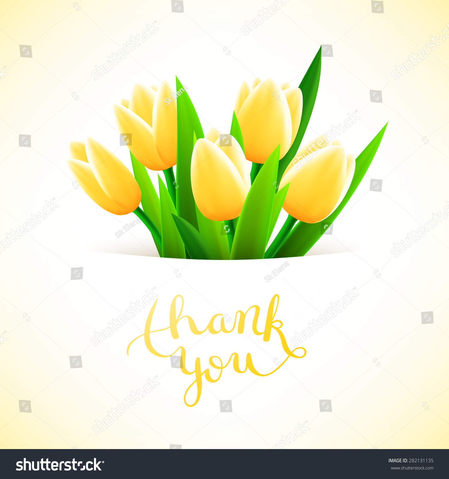 Beautiful Flower Thank You: Thank You Tulip Flowers Beautiful Card Stock Vector