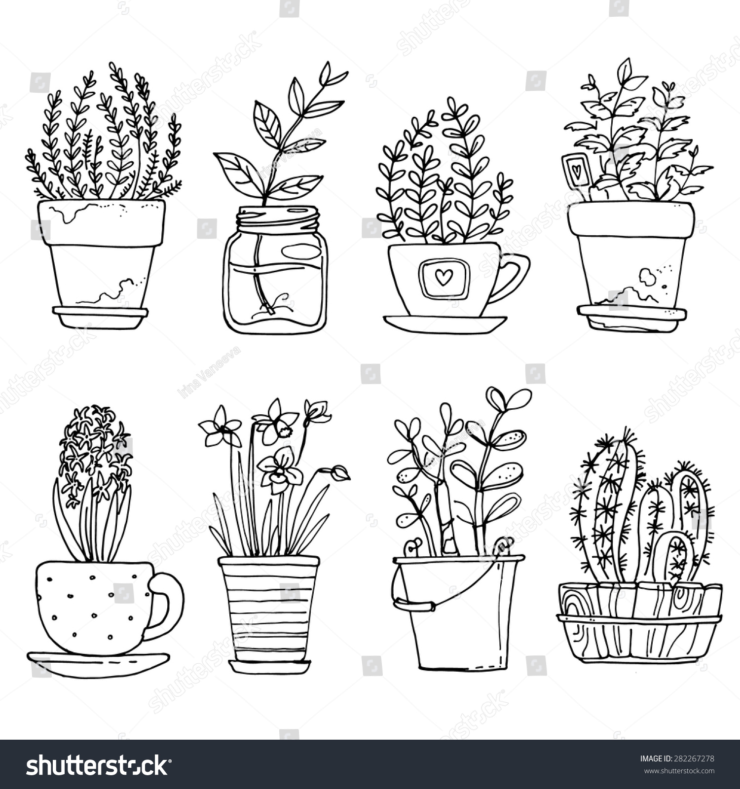 Flowers in pots painted black line on a white background Vector drawing lines