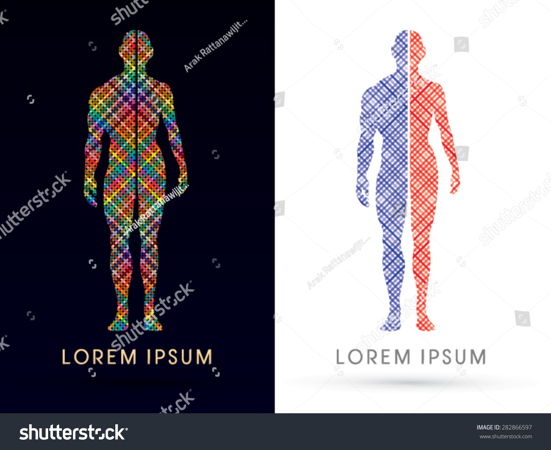 Half Body Male Female Anatomy Designed Stock Vector 282866597 ...