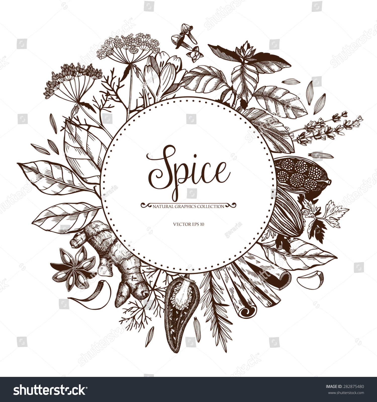 spices and herbs  ...