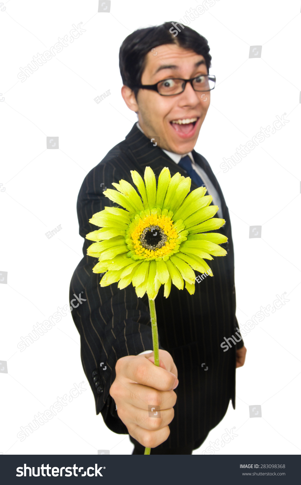 Young Man Black Costume Flower Isolated Stock Photo Royalty Free