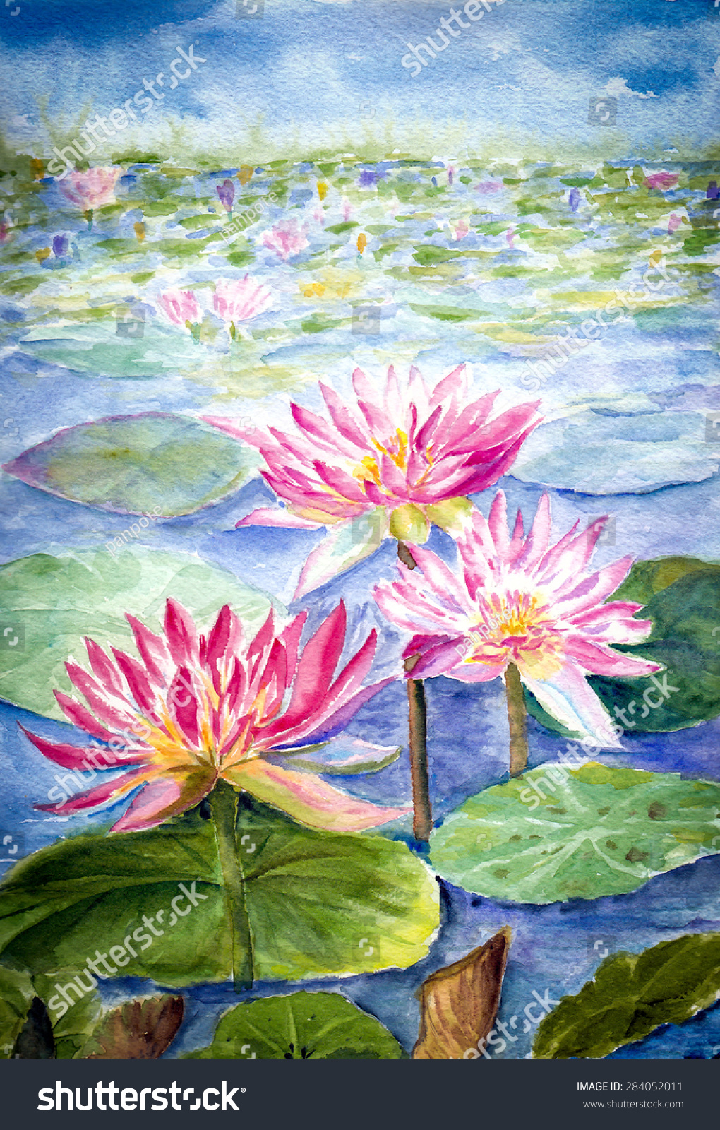 Water Color Painting Lotus Flower Stock Illustration 284052011